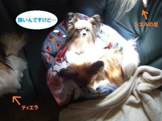 24-01_20120324210841.jpg