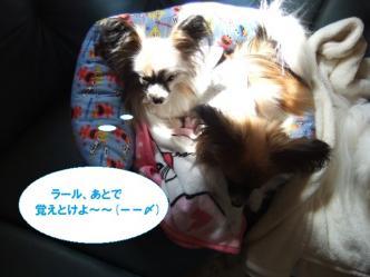 24-03_20120324210840.jpg