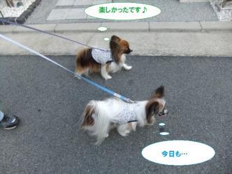 25-14_20111125170432.jpg