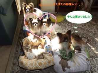 28-02_20120328221300.jpg