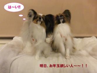31-12_20111231205743.jpg