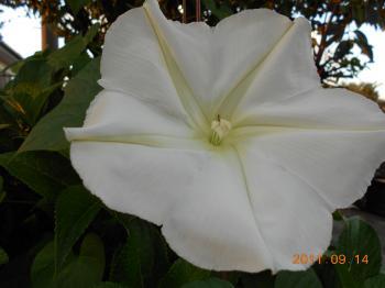 006_convert_20110914211429.jpg