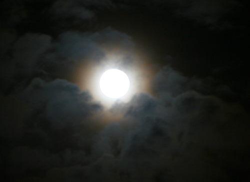 満月726の1