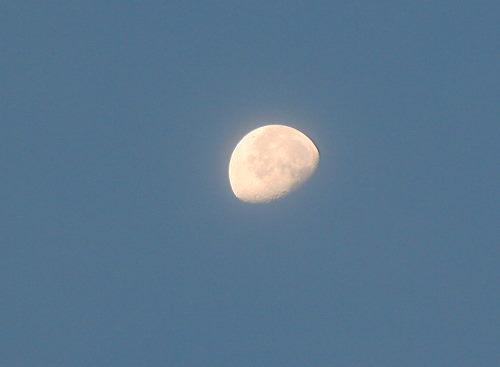 お月さま830_4258