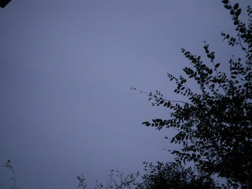雨空1030