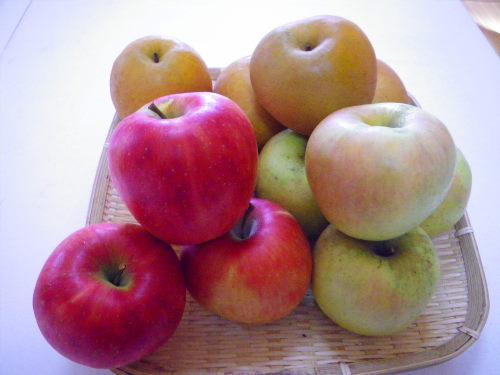 リンゴなし