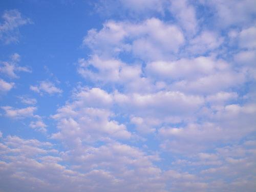 雲1108の1