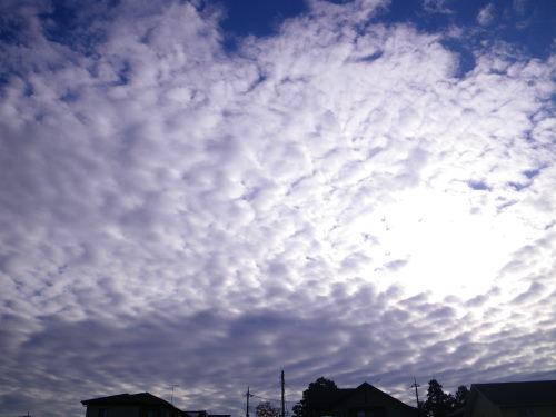 雲1118