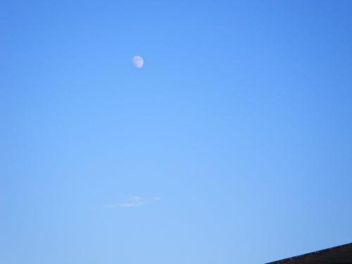お月さま1118の1