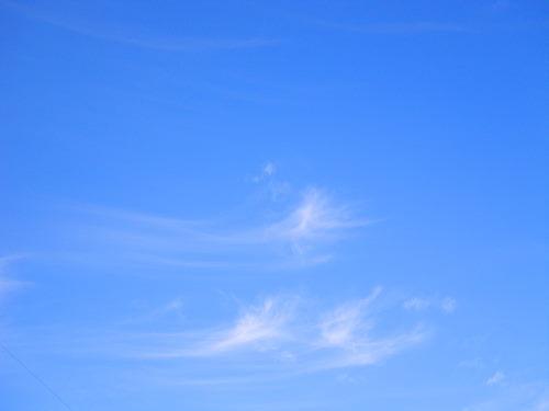 雲1124の1