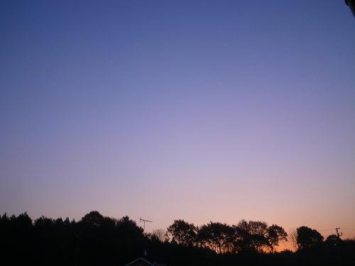 夜明け1128