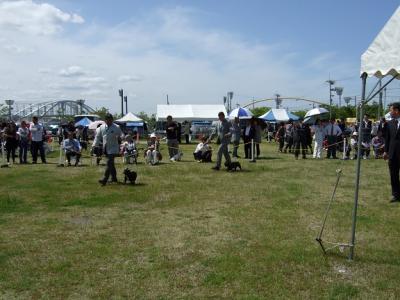 2010107676.jpg