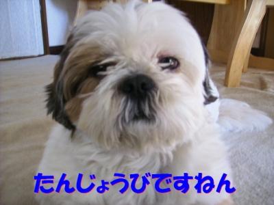 PC063301.jpg