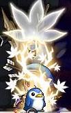 Maple110825_200939.jpg