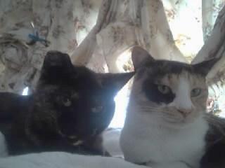 マリラ&ペリエ2