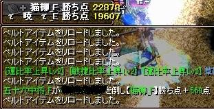 VS猫柳7
