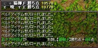 VS猫柳6