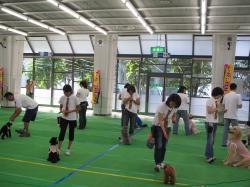2012K9西日本大会⑤