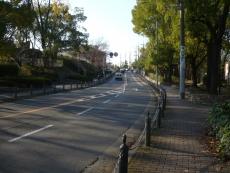 交差点付近の通り