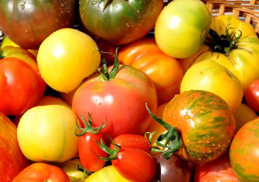 トマトの盛合せ