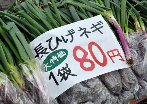 24年_秋蕎麦_07