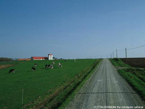 草原イメージ2012a