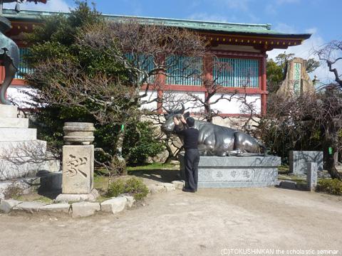 防府天満宮2012牛