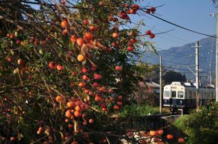 2011年10月28日 上田電鉄別所線 八木沢~別所温泉 7200系7253F