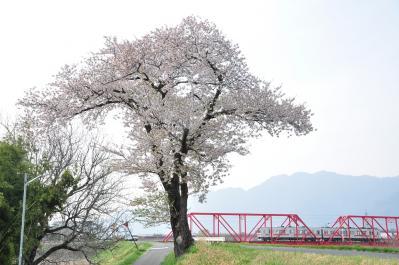 2012年4月25日 上田電鉄別所線 城下~上田 1000系1004F