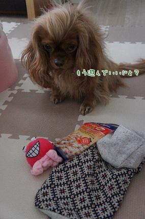 嵐丸 2013.12.28-3