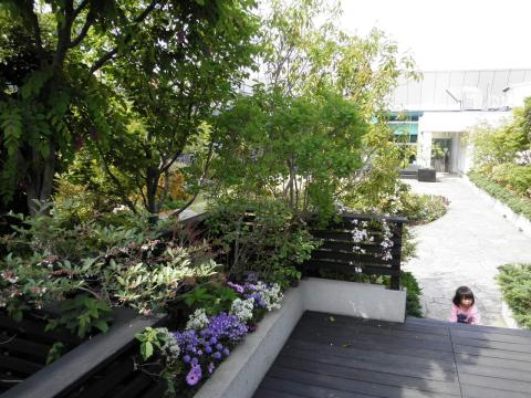 春の庭園006