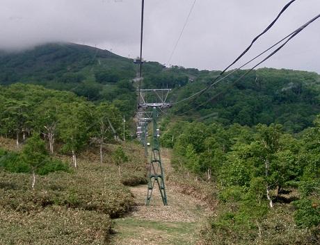 P6162001.jpg