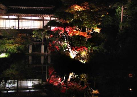 長瀞宝登山神社ライトアップ