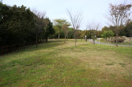 2010_1113(070).jpg