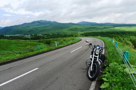 ナイタイへの道
