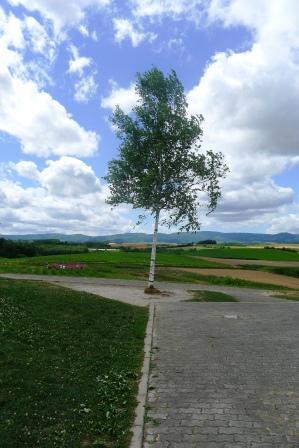 新栄の丘4