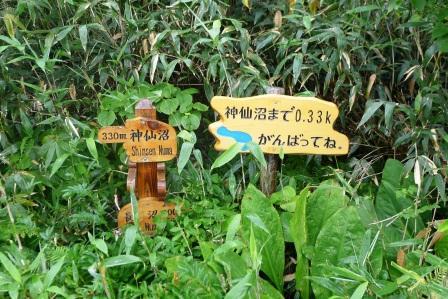 神仙沼へ2