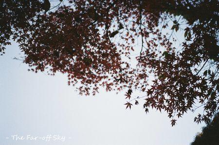 2011-12-03-001.jpg