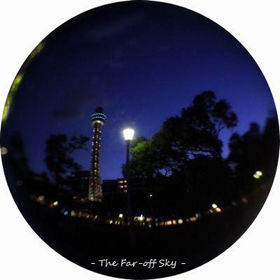 2012-01-18-001.jpg