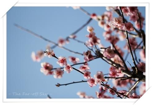 2012-03-22-03.jpg