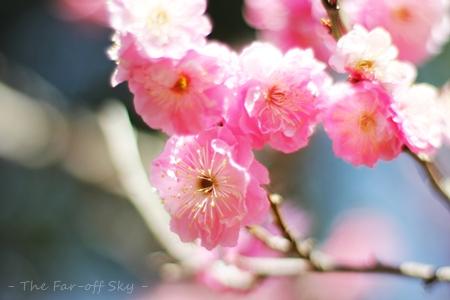 2012-04-01-02.jpg