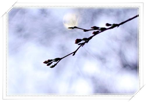 2012-04-01-03.jpg