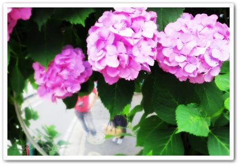 2012-06-28-02.jpg