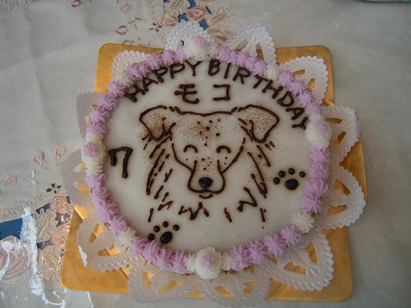 モコ7歳のケーキ1