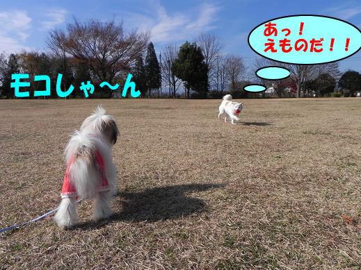 えものだ!!  12/1
