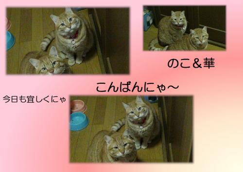 繧医m縺励¥_convert_20131119221101