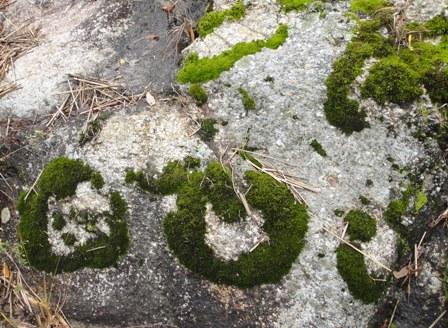 岩のメッセージ