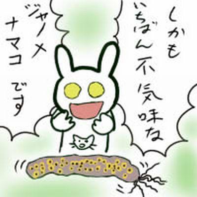 6_20101105030545.jpg