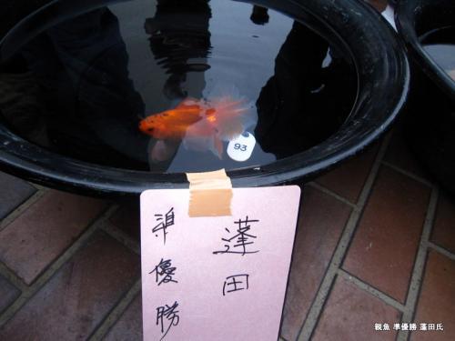 親魚 準優勝 蓬田氏