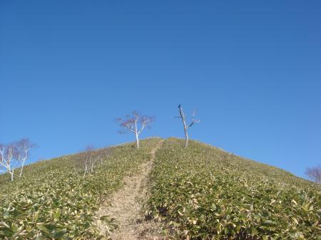 青空へ向かう登山道